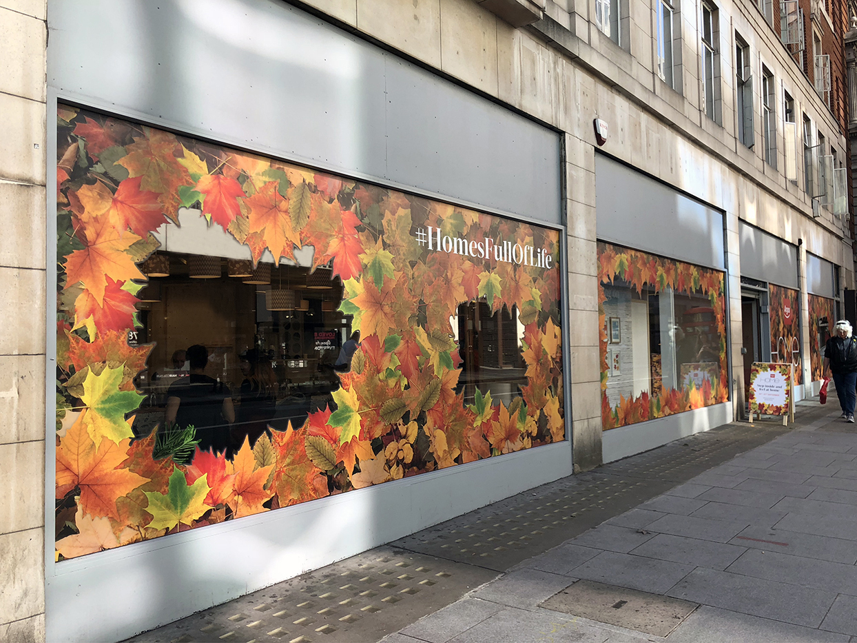 Argos Home pop up window signage