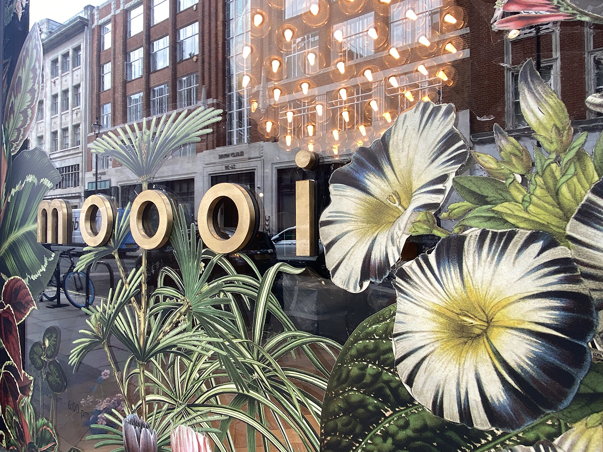 window display showing white flowers on Moooi store