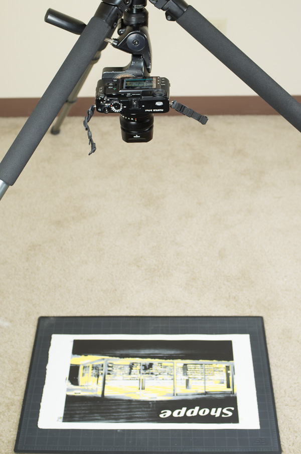 Tripod set up for photography